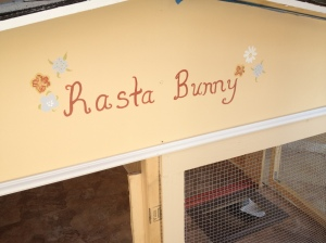 bunny home 1